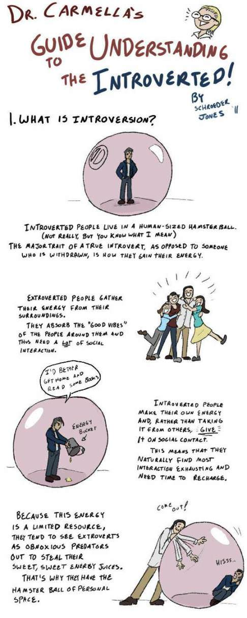 Guide to Understanding Introverted